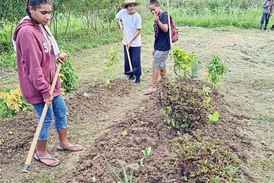 Bientôt une Maison familiale et rurale en province Sud