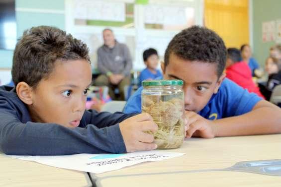 Les écoliers de la Conception plongés au cœur d'une expédition scientifique
