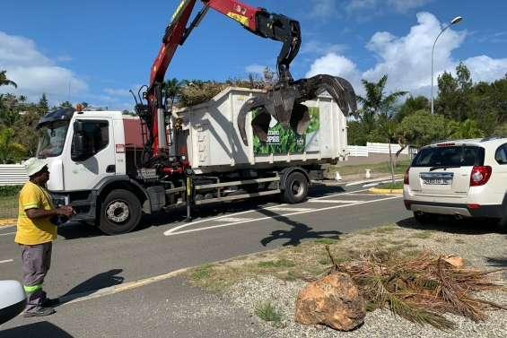Nouméa : 14 quartiers invités à sortir leurs déchets verts aujourd'hui