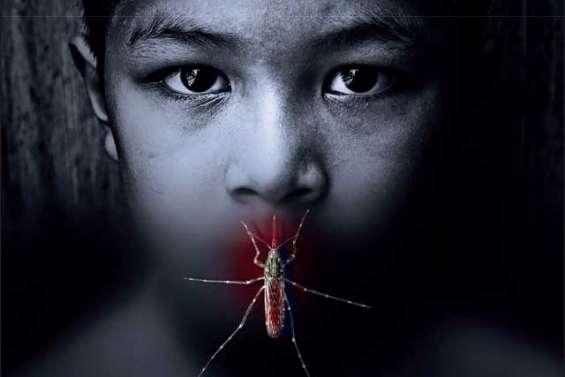 Quand la dengue devient mortelle