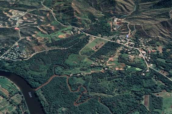 Coups de sabre à Ouégoa, trois blessés et deux interpellations