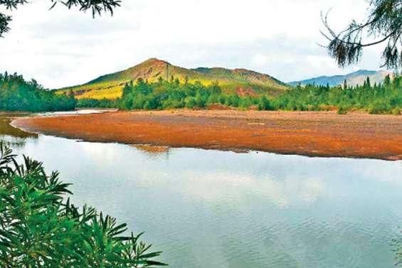 Pollution : baignade et pêche interdites à la rivière des Pirogues
