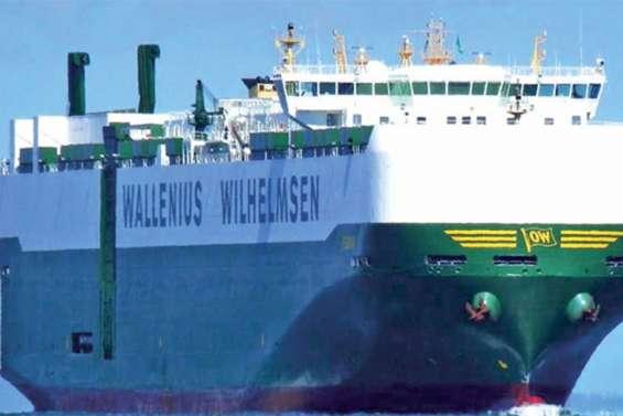 Infesté de punaises diaboliques, un cargo placé en « quarantaine » au large de Nouméa