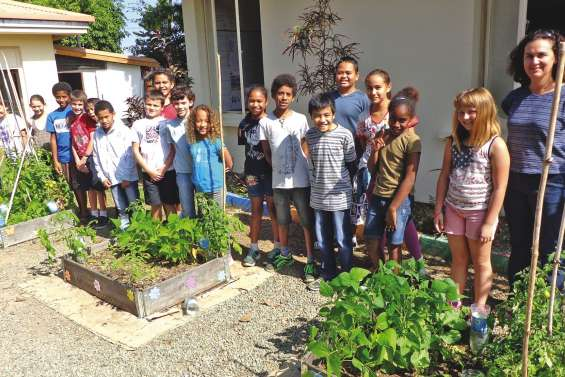 Faire un jardin à l'école, ce n'est pas du cinéma
