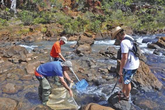 Percer les mystères des rivières