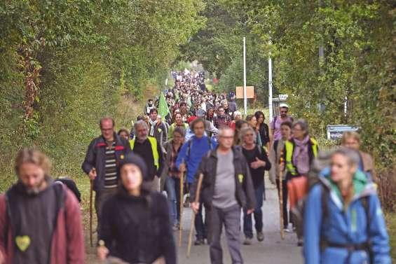 Des milliers de bâtons pour défendre la Zad