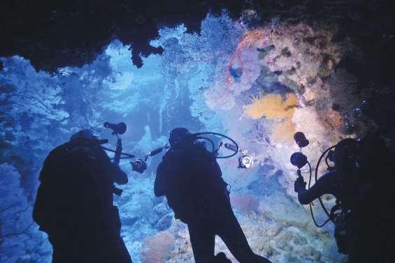 Les sites récifaux  de Poindimié filmés à 360°