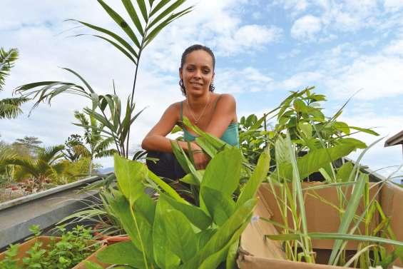 Le goût de Laura pour les vertus des plantes