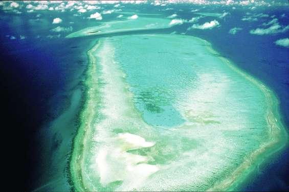La Grande Barrière menacée par la pollution