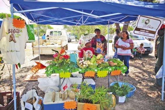 Des producteurs bio au marché communal de Pouembout