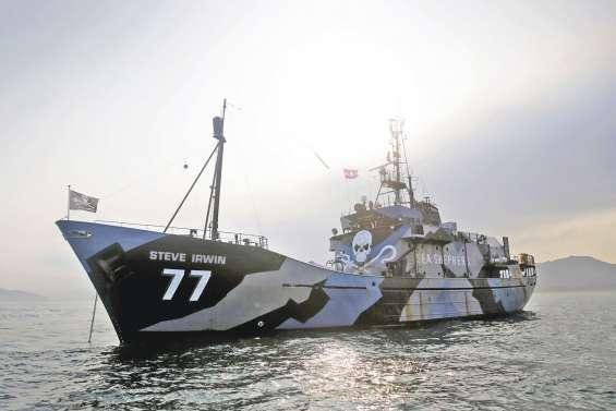 Sea Shepherd défie les baleiniers japonais
