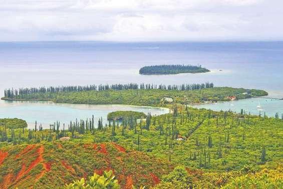 Trop de nickel dans l'eau à l'île des Pins : à Kuto, il faudra aller à la cuve