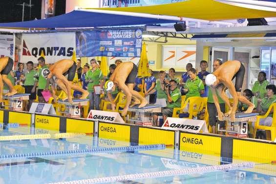 Les 700 nageurs du meeting Qantas prêts à sauter à l'eau