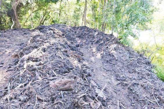 Des déchets verts très encombrants