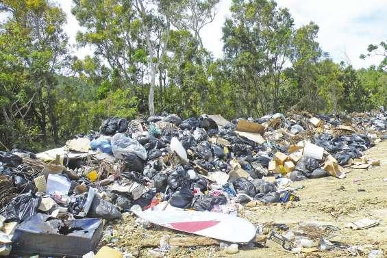 Le ramassage  des ordures taxé