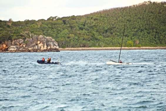 Un requin-marteau découvert mort  à la Côte-Blanche