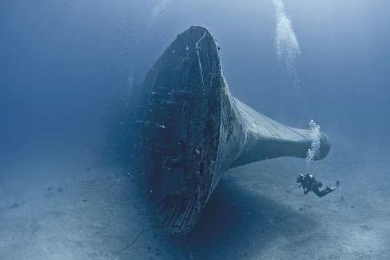 Début demain du Festival de l'image sous-marine