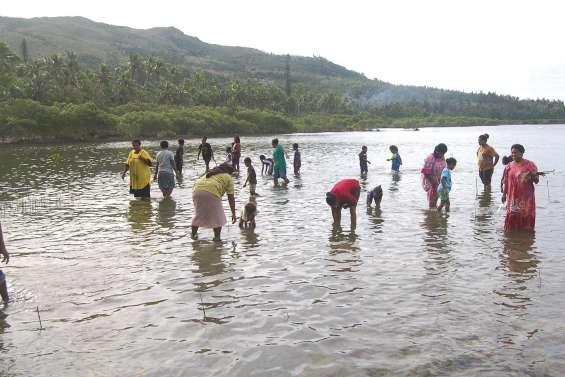 Jour de fête et de protection de  l'environnement à l'école d'Ometteux