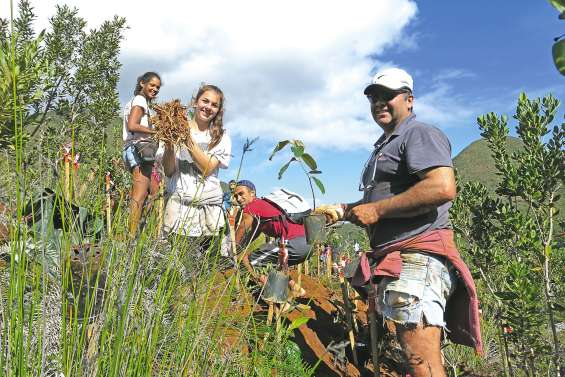 Les amis de la nature restaurent le maquis minier