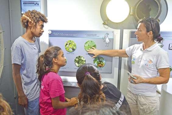 Les collégiens de Païamboué auscultent la biodiversité