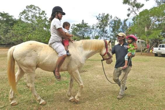 La parentalité, un travail de cheval