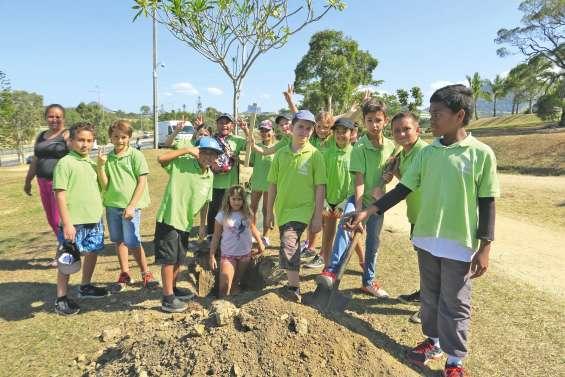 Les élèves de Paul-Duboisé parient sur le vert au parc de Koutio