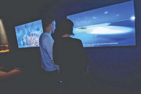 Le récif de Calédonie recréé  à l'Aquarium de Paris