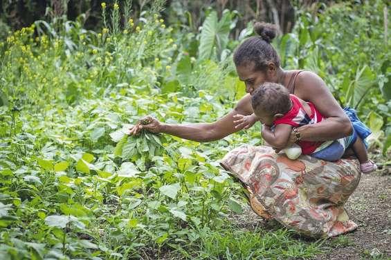 Séminaire océanien organisé au Vanuatu
