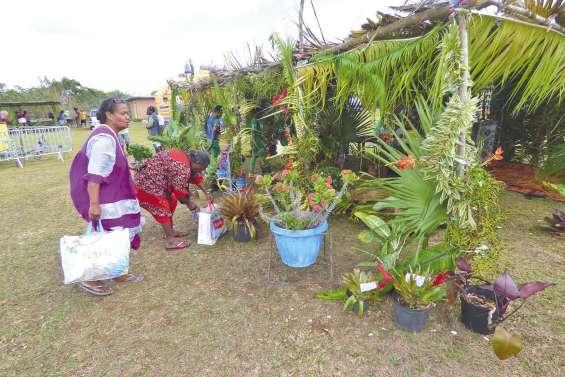 La quatrième fête du tubercule  a animé la tribu d'Hunoj-Ponoz