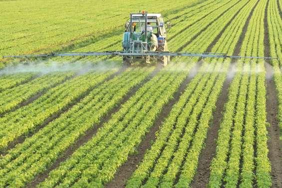 Nouvel épisode de la guerre des pesticides