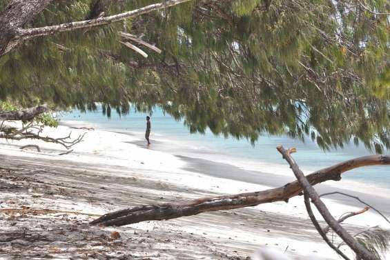 Des boulettes d'hydrocarbure retrouvées sur des plages de Lifou