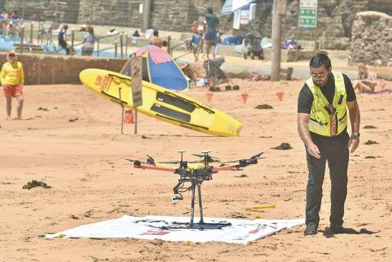 Des drones pour repérer les requins