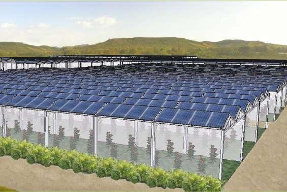 Les serres photovoltaïques de Farino vont sortir de terre