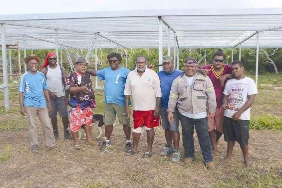 La tribu de Kumo construit  sa maison commune