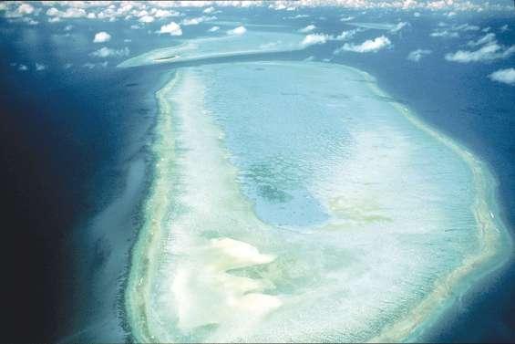 Qui pourra sauver la Grande Barrière ?