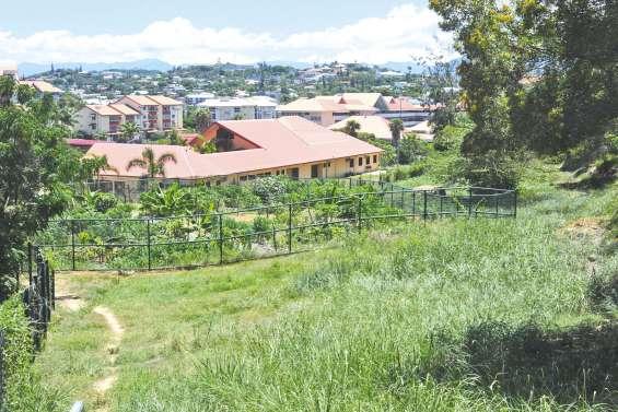 De nouvelles parcelles de jardins familiaux