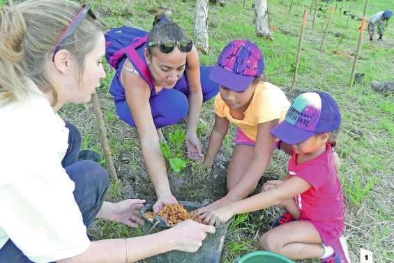La forêt sèche du Ouen Toro doit être sauvegardée
