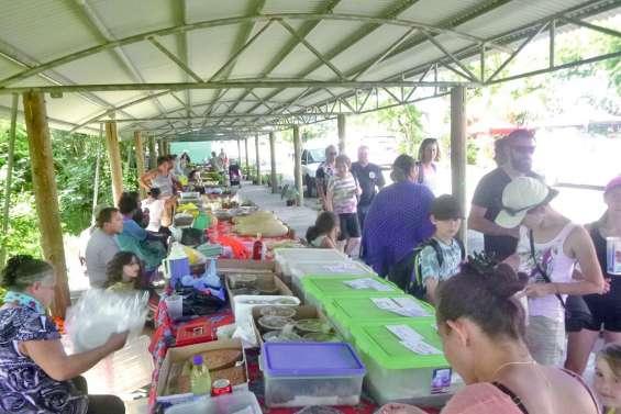 Le marché concurrencé  par la Fête de Boulouparis