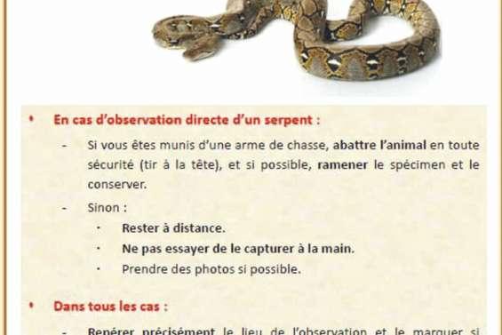 Python : le Conservatoire appelle à la vigilance