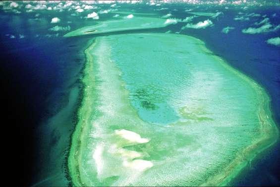 Protéger la Grande Barrière : ils en appellent à l'Unesco