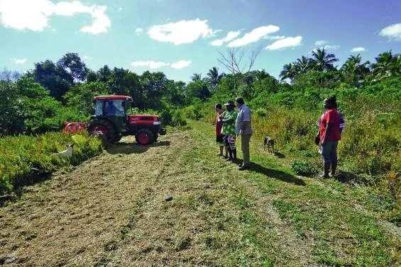 Les agriculteurs se sont penchés sur le maraîchage