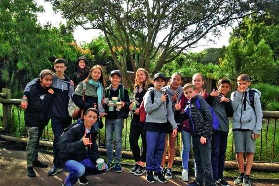 Les jeunes karatékas en voyage à Auckland