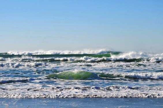 Les canicules marines en plein boom