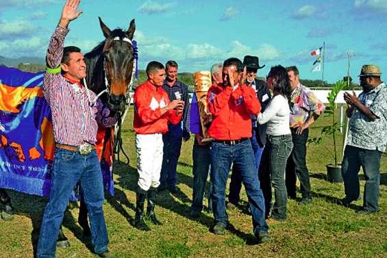 Les chevaux à Boulouparis pour une journée nordiste