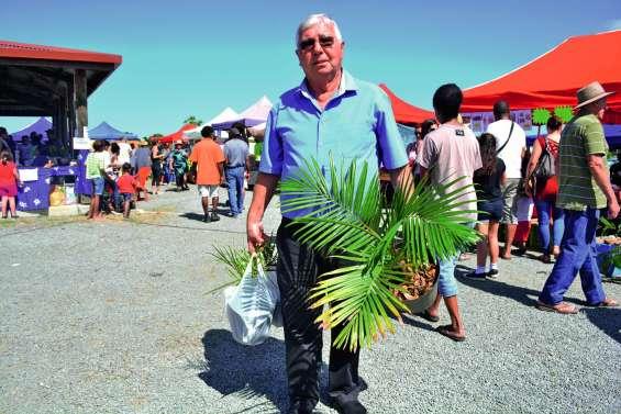 Des amateurs de palmiers comblés