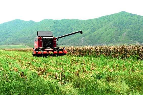 OGM : nouvel appel à durcir la loi