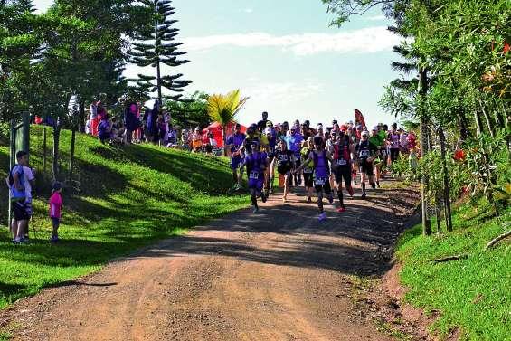 Plus de 500 coureurs se lancent demain sur les pistes de Boulouparis