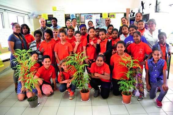 Une exposition pour la sauvegarde de la forêt humide à l'école Saint-Michel
