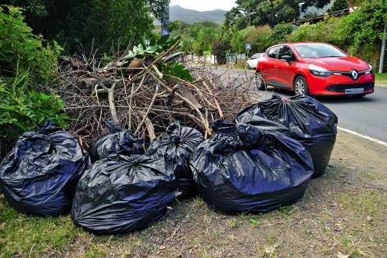 Le marché des déchets verts épinglé par le haut-commissariat
