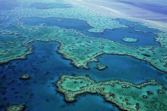 Science et tourisme s'écharpent sur la Grande Barrière